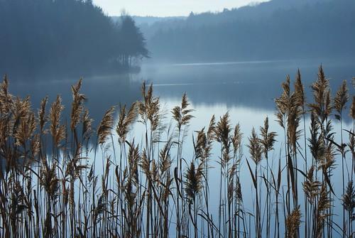 lake tó hársas