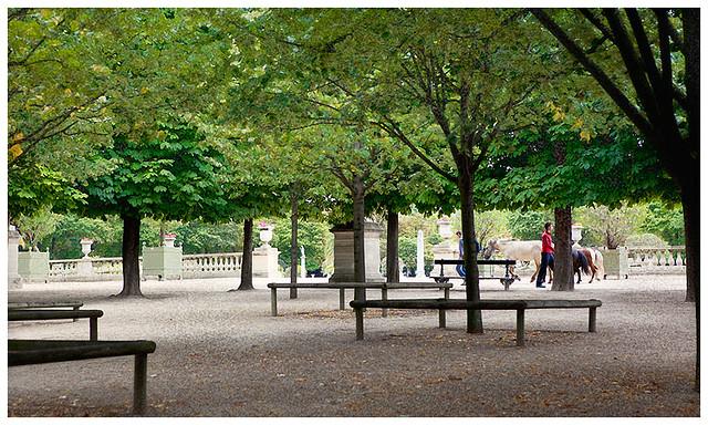 hbfotografic-paris-parks (1)