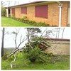 Cyclone Dylan: shutters on the house, tree on the garage