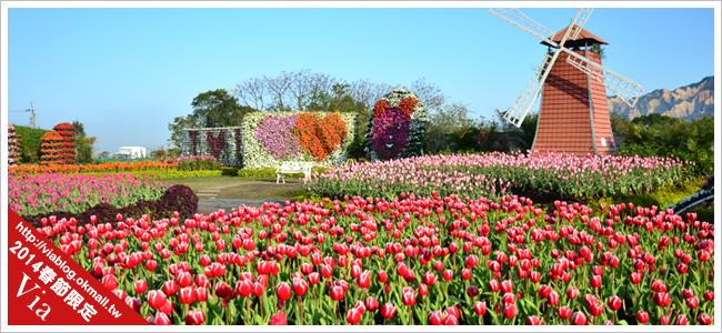 中社觀光花市~滿滿的鬱金香在這裡綻放了!