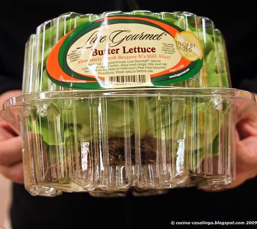 Lettuce klein copyr