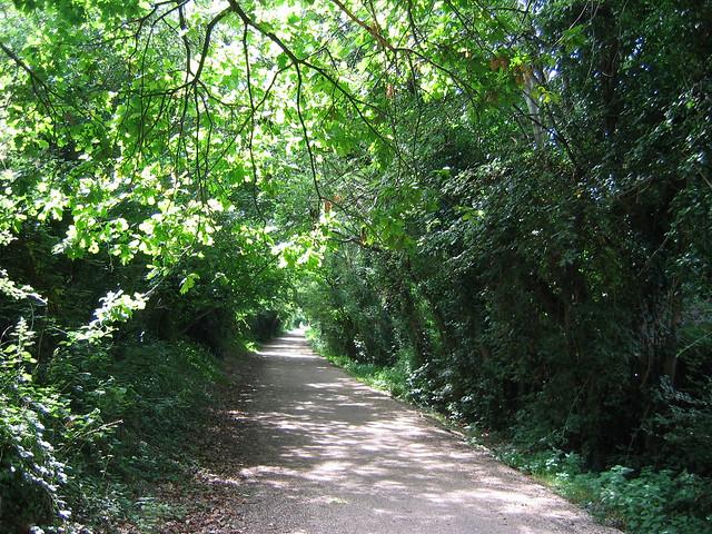 The Hayling Billy Trail in HavantThe Hayling Billy Trail in Havant