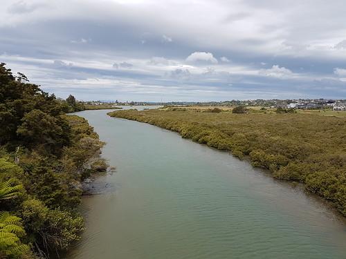 Orewa Estuary Walk