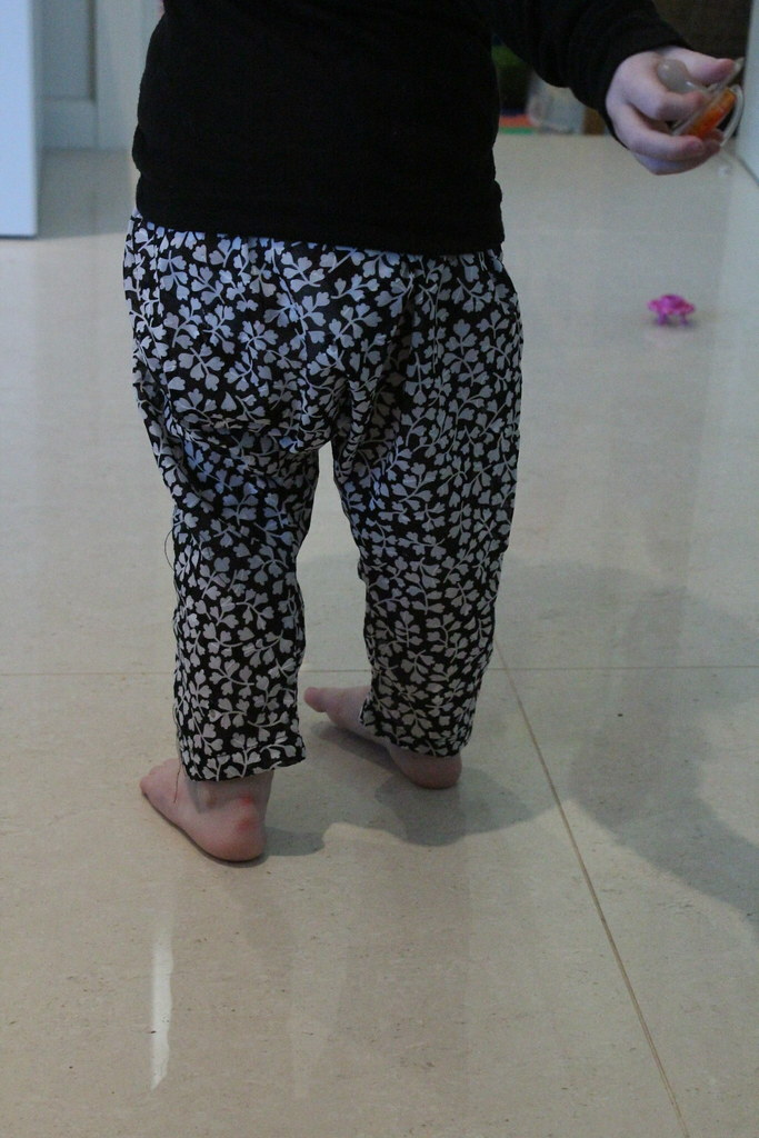 Sareoul pants