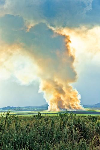 013 Sean M. Hower(c) Maui Cane Burning_2013-BOM