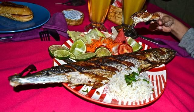Fish For Dinner - Atelie Del Mar Hotel - Monterrico, Guatemala