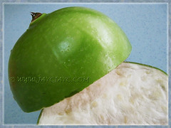Cross-section of Crescentia cujete's fruit (Calabash Tree) - August 23 2013