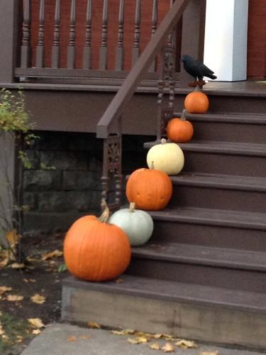 Pumpkins by susanvg