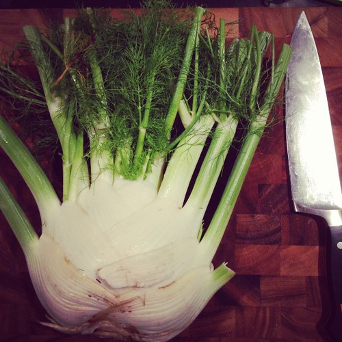 Frankenfennel. Chef's knife for scale.