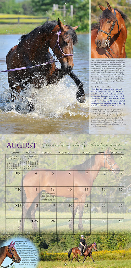 Horses and Hope calendar: August 2014