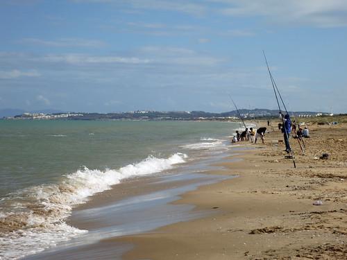 tunisia tunis sidibousaid catharge novemberdelta noetzold