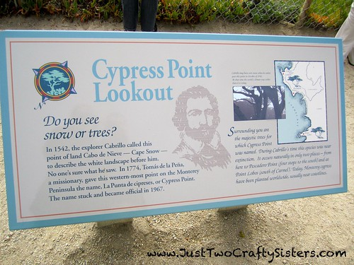 Cyprus Point Lookout