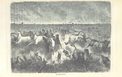 """British Library digitised image from page 321 of """"Das heutige Mexiko. Land und Volk unter Spaniens Herrschaft, sowie nach erlangter Selbständigkeit, etc [With plates.]"""""""