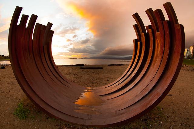 Whale Ribs