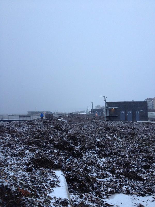 the first snow, morning walk after stormen sven, helsingborg