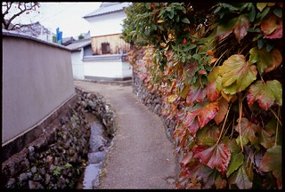 One scene of Asuka Village taken by film camera.