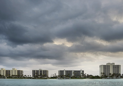 New Years Day 2014: Florida by Alida's Photos