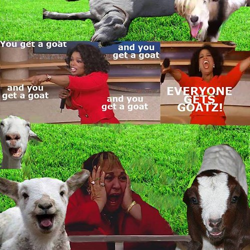you get a goat