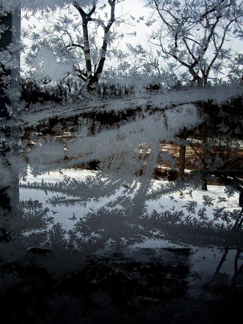 frosty window 2