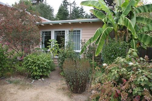 Front Garden in August