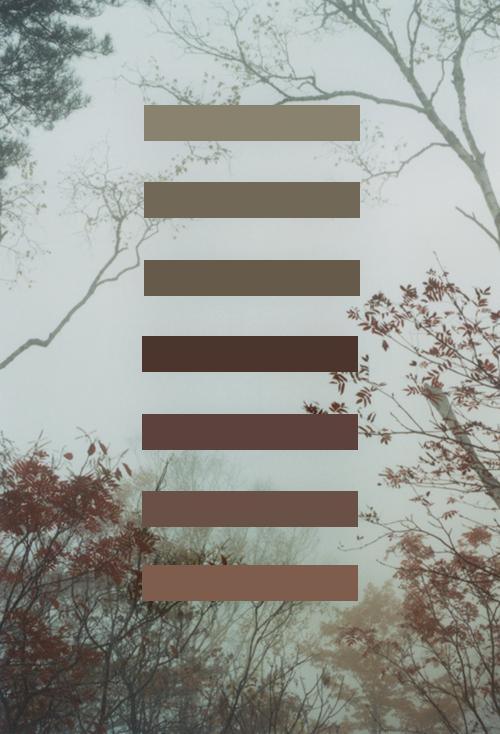 pantone-perfection-003