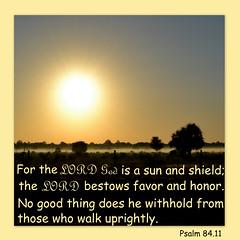 Psalm 84.11
