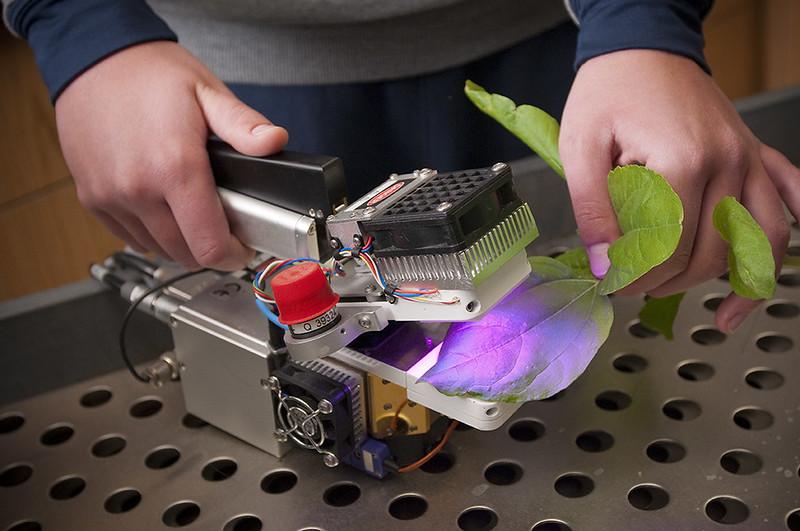 Leaf Chamber Fluorometer
