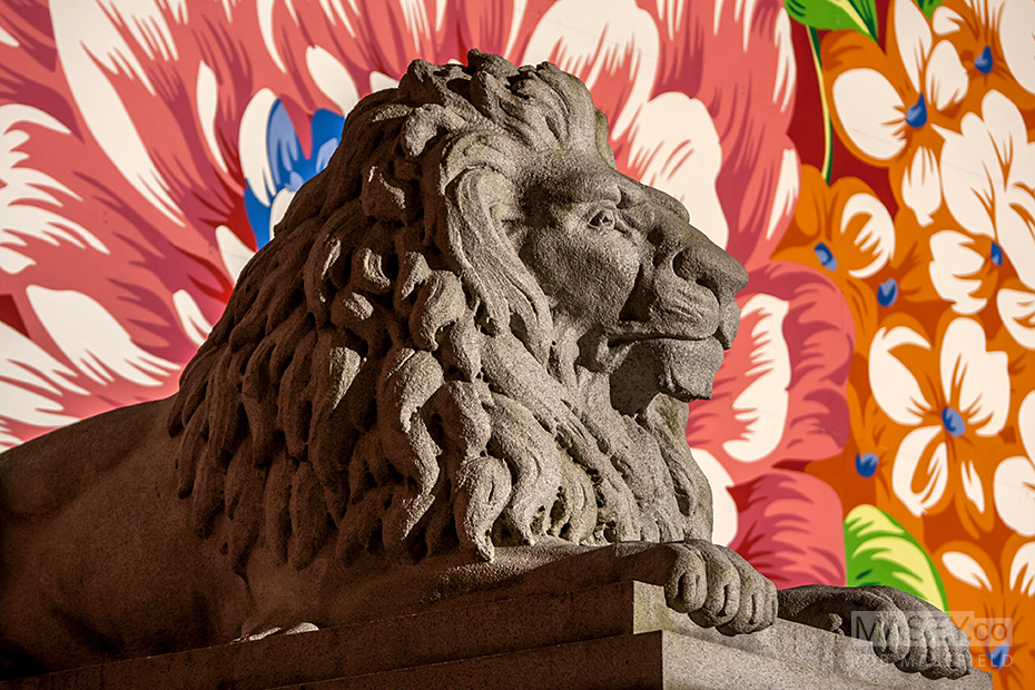 One of the Vancouver Art Gallery's guarding lions.