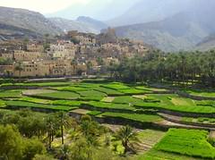 Oman / عمان