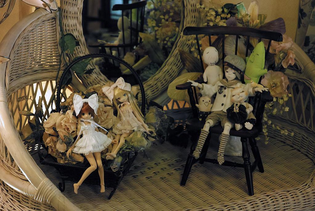 1/6 Dolls