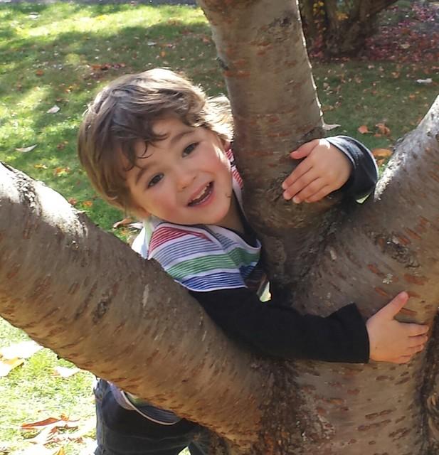 Eskil's tree