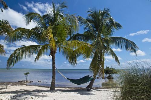 deerrun bedandbreakfast bigpinekey florida fl floridakeys caribbean gulfofmexico tropics tropical beach ocean sea view vacation palmtree keys