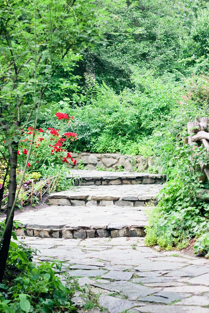 {shakespeare garden} via chevrons & éclairs