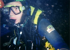Greg Diving Image