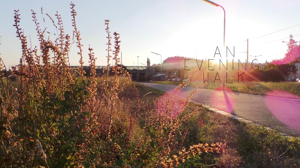 Evening Walk.jpg