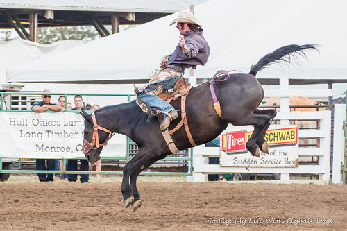 Benton County Fair and Rodeo 2013-6927