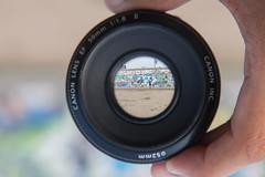digital camera(0.0), camera(0.0), wheel(0.0), single lens reflex camera(0.0), eye(0.0), cameras & optics(1.0), teleconverter(1.0), lens(1.0), fisheye lens(1.0), camera lens(1.0), organ(1.0),