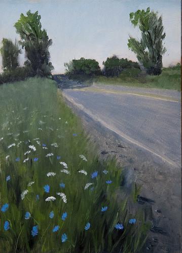 Roadside flowers_56E8459