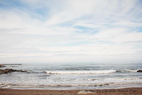 Beach Trip-8607