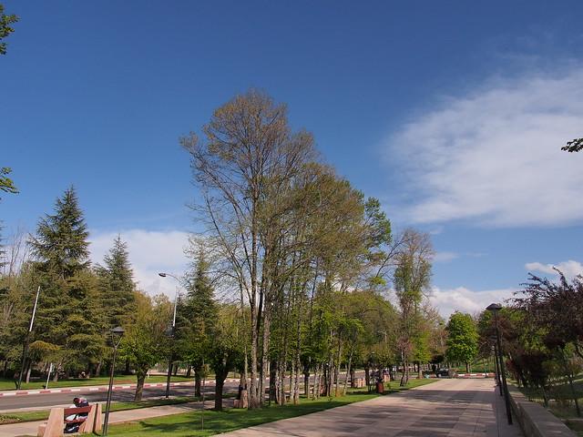 IFRAME的街景