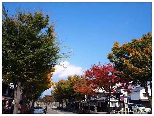 Autumn dayn #02