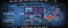 Palo Alto Description