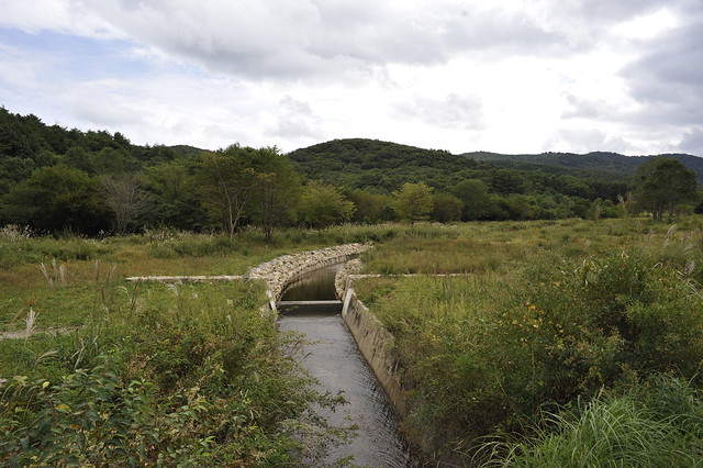 夏に続き,霧ヶ谷湿原のいきもの観察会です.秋の気配に包まれた湿原ではどんな花や昆虫を見ることができるのでしょうか?遊歩道を歩きながら,ゆっくりじっくりと観察しましょう.