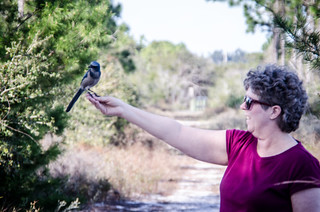 Laura with Scrub Jay
