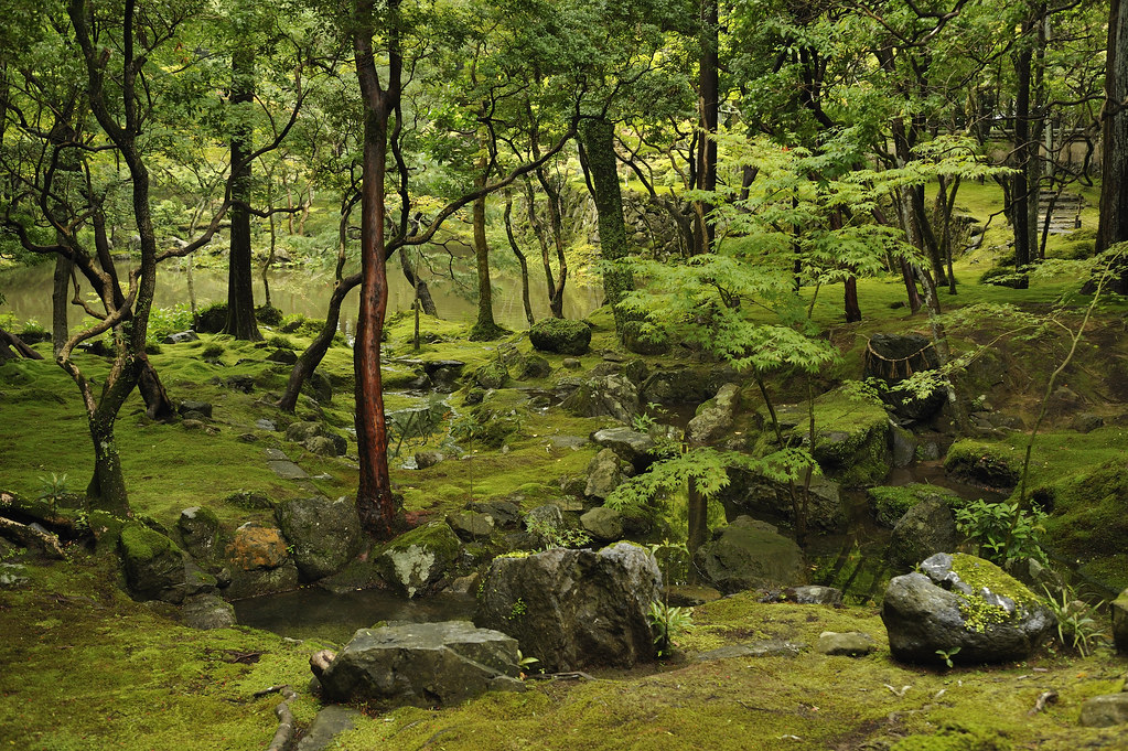 Buddhist garden Kokedera / Saihou-ji