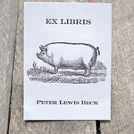 Custom Book Plate with cute pig!