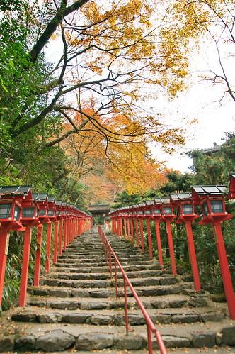 【写真】2012 紅葉 : 貴船神社/2019-02-06/IMGP5929