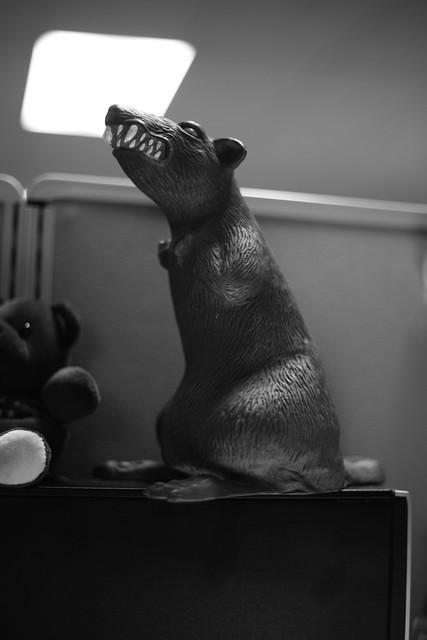 Static Rat Noir