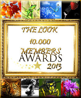 AWARD COLECTION 10.000 MEMBERS