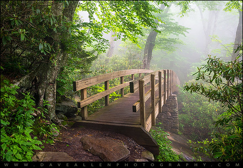 nature fog hiking foggy trail appalachian blueridgeparkway appalachians grandfathermountain roughridge